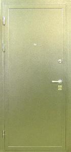 Металлическая дверь с порошковым напылением №2