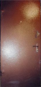 Металлическая дверь с порошковым напылением №3